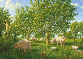 Schweine unter Apfelbäumen