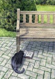 KD Reading Cat