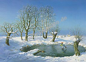 KD Winter