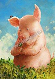 KD Viiiel Schwein