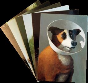 Postkarten-Set Sowa