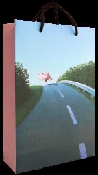 Tragetasche Autobahnsau